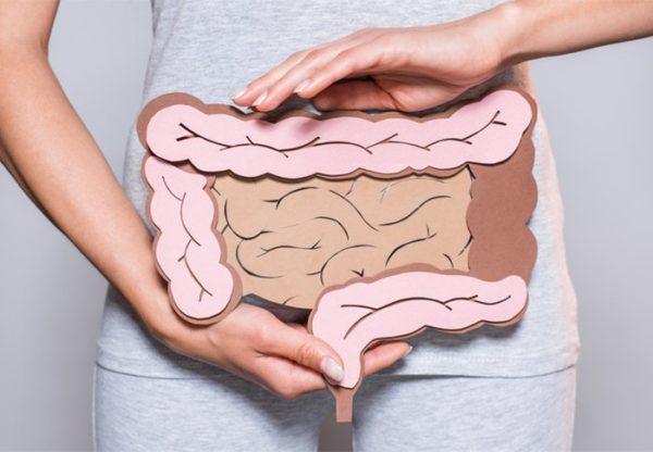mulher segurando boldura com desenho do intestino