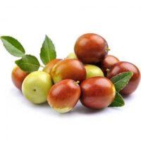 frutos da jojoba para o oleo do sabonete para candidiase