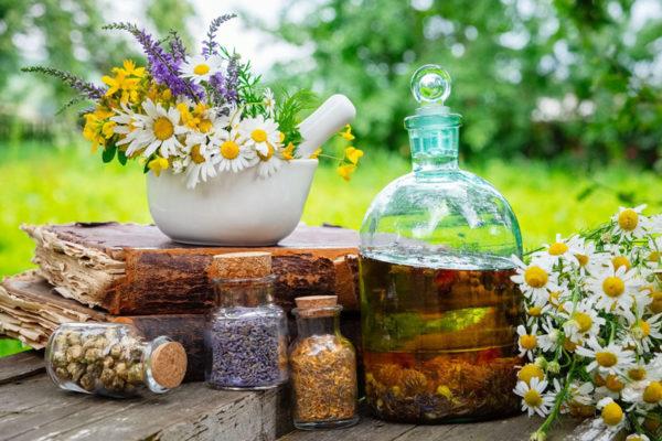 remedios naturais da medicina alternativa